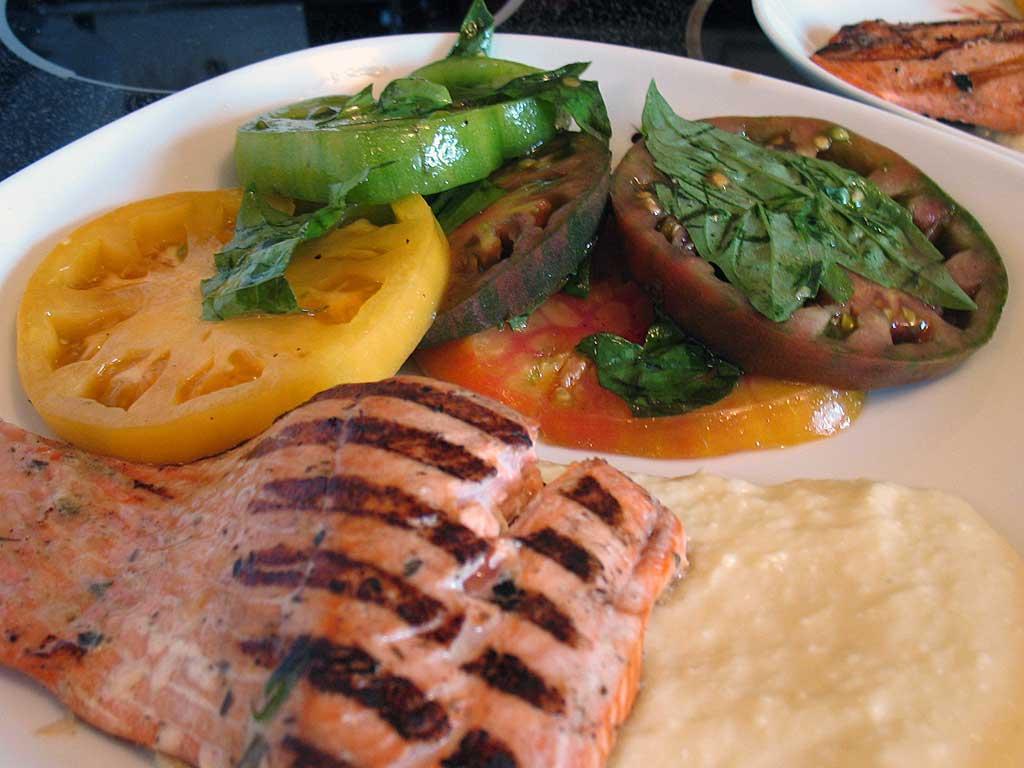 Cat Food Vs Salmon